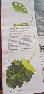 Feast gadget - Kale Stripper