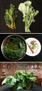 Rescuing Your Leafy Greens