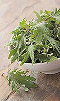 Massaged Kale & Mango Salad